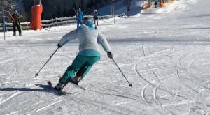 Level 3 Ski Training Alps